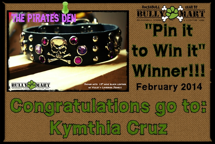 - Feb 2014 Pin It To Win It Winner